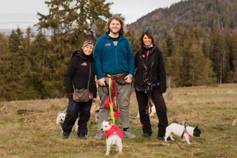 Oh Dog l'équipe de promeneurs de chiens au complet