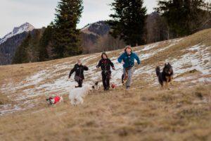 Oh Dog, votre dog sitter à Vevey, Montreux. Promenades en pleine nature pour votre chien. Pension pour animaux.
